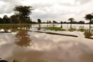 Фото: pixabay.com | Названы районы Приморья, которые могут серьезно пострадать от удара стихии