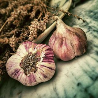 Фото: pixabay.com   Опытные дачники рассказали, что использовать для подкормки чеснока