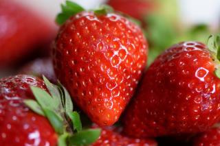 Фото: pixabay.com | Получить богатый урожай клубники можно благодаря секретной подкормке