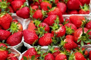 Фото: pixabay.com   «Только для миллионеров»: местную клубнику и жимолость начали продавать в Приморье