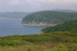 Фото: Wikipedia/Романвер | «Начало новой пандемии?»: что нашли приморцы на побережье острова Шкота
