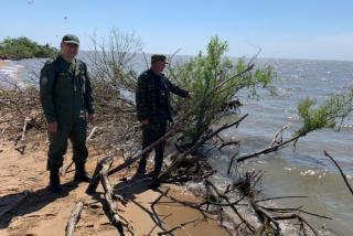 Фото: Следственный комитет   «Шансов не было»: СК РФ озвучил новые детали трагедии на озере Ханка в Приморье