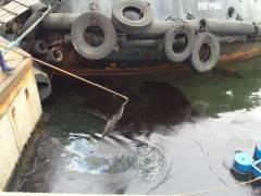 Мазутом залило акваторию бухты Золотой Рог во Владивостоке