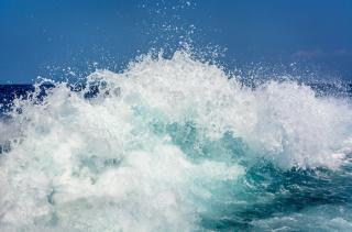 Фото: pixabay.com   «Четыре трупа кто похоронит?»: трагедия на пляже Приморья попала на видео