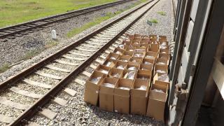 Фото: Уссурийская таможня | Товар, предназначенный для отправки в Китай, удивил приморских таможенников
