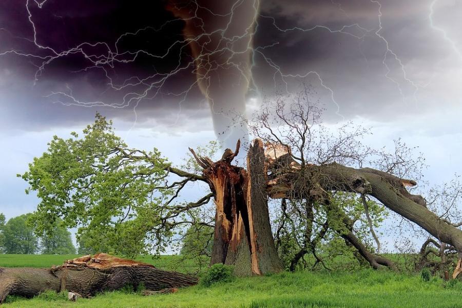 «Только этого нам и не хватало»: опасное явление пришло в Приморье