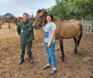 Фото: amur-tiger.ru | «На тигра никто не в обиде»: жительница Приморья получила лошадь взамен съеденной тиграми