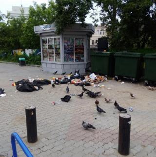 Фото: сообщество @Владивосток | «Больше туда ни ногой»: в Сети пожаловались на популярное место отдыха во Владивостоке