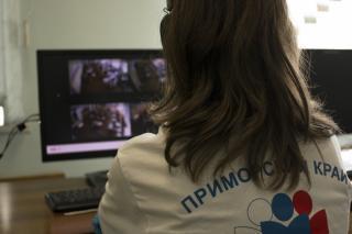 Фото: PRIMPRESS   Видно каждого: в Приморье за проведением ЕГЭ наблюдают волонтеры