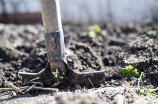 Фото: pixabay.com | Огородникам назвали дни в июне, когда нельзя ничего сажать