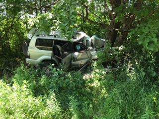 Фото: 25.мвд.рф | Уснул за рулем и въехал в дерево: в Приморье водитель устроил ДТП, в котором пострадал ребенок