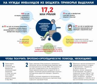 Фото: PRIMPRESS | Более 17 миллионов рублей выделили из бюджета Приморья для поддержки инвалидов (инфографика)