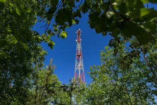 Фото: МегаФон | Смартфон против тяпки: для кого в Приморье дача – место цифрового отдыха