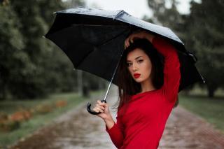 Фото: pixabay.com | Готовьте зонты: дожди и грозы ожидаются завтра в Приморье