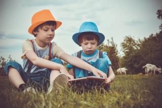 Фото: pixabay.com | В Приморье на отдых детей в трудной жизненной ситуации направлено более 78 миллионов рублей