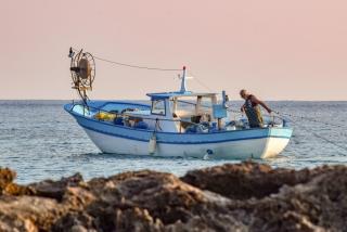 Фото: pixabay.com | «Здоровый гад»: огромного «зверя» с глубин выловили рыбаки в Приморье