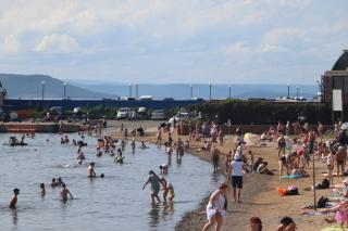 Фото: PRIMPRESS   «Огромный, как лайнер»: большой морской «зверь» вышел к людям на пляже в Приморье