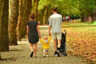 Фото: Pixabay | В Приморье родителям начнут оказывать различную помощь