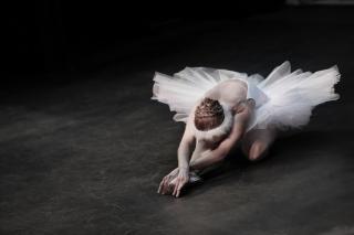 Фото: pixabay.com   Балетные премьеры откроют VI Международный дальневосточный фестиваль «Мариинский»