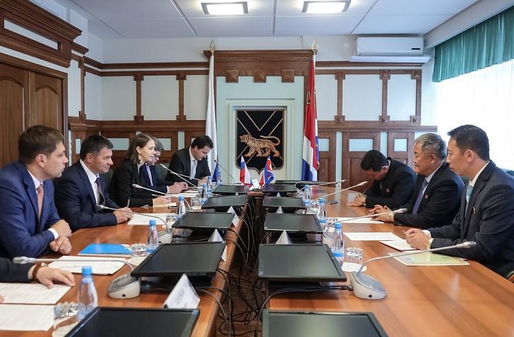 Врио губернатора Приморья встретился с генконсулом КНДР во Владивостоке