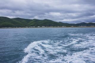 Фото: PRIMPRESS   «Фукусима рулит»: выловленную в Амурском заливе рыбу обсуждают в Сети