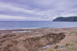 Фото: PRIMPRESS | «На это можно смотреть бесконечно»: видео, снятое у побережья Приморья, восхитило людей