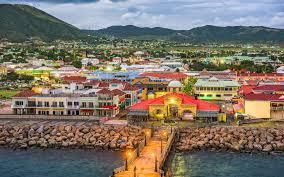Фото: freepik.com | Получение гражданства Сент-Китс и Невис: преимущества