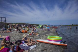 Фото: PRIMPRESS | «Так и акулы придут»: что увидели в воде на популярном пляже Владивостока