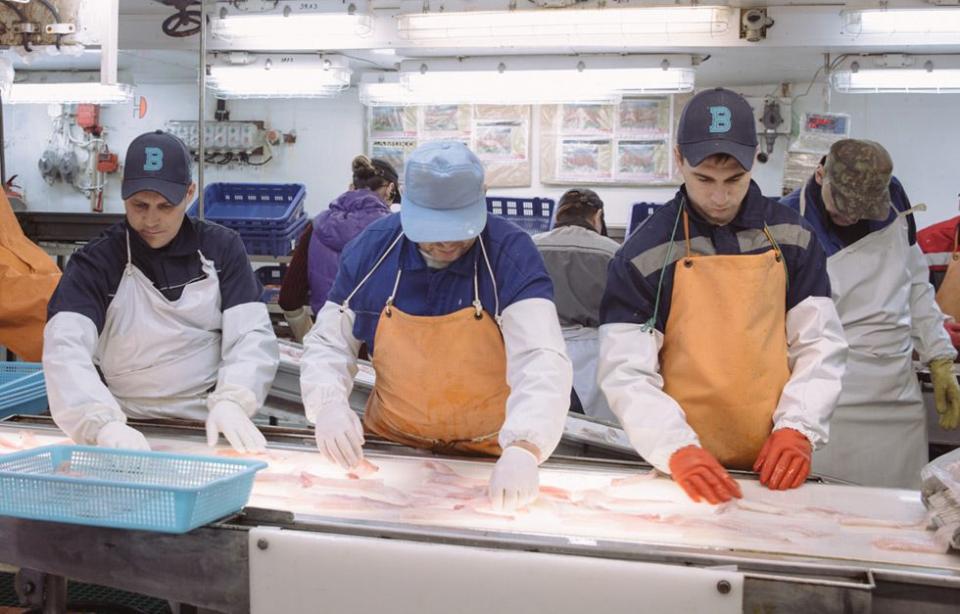 Акционер известной в Приморье рыбодобывающей компании попался на крючок