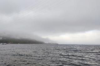 Фото: PRIMPRESS   «Ого, все живы?»: жителей Приморья напугало, что поймали в море под Владивостоком