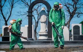 Фото: vlc.ru | Во Владивостоке продолжают обрабатывать от клещей парки и кладбища