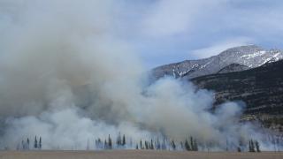 Фото: Pixabay.com | В Приморье всеми силами тушат три крупных лесных пожара