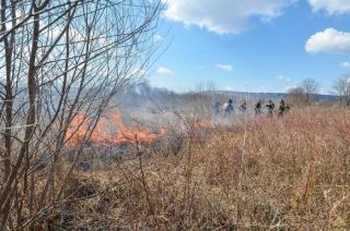 Фото: Александр Потоцкий / PRIMPRESS | Возможны пожары: в Приморье действует штормовое предупреждение