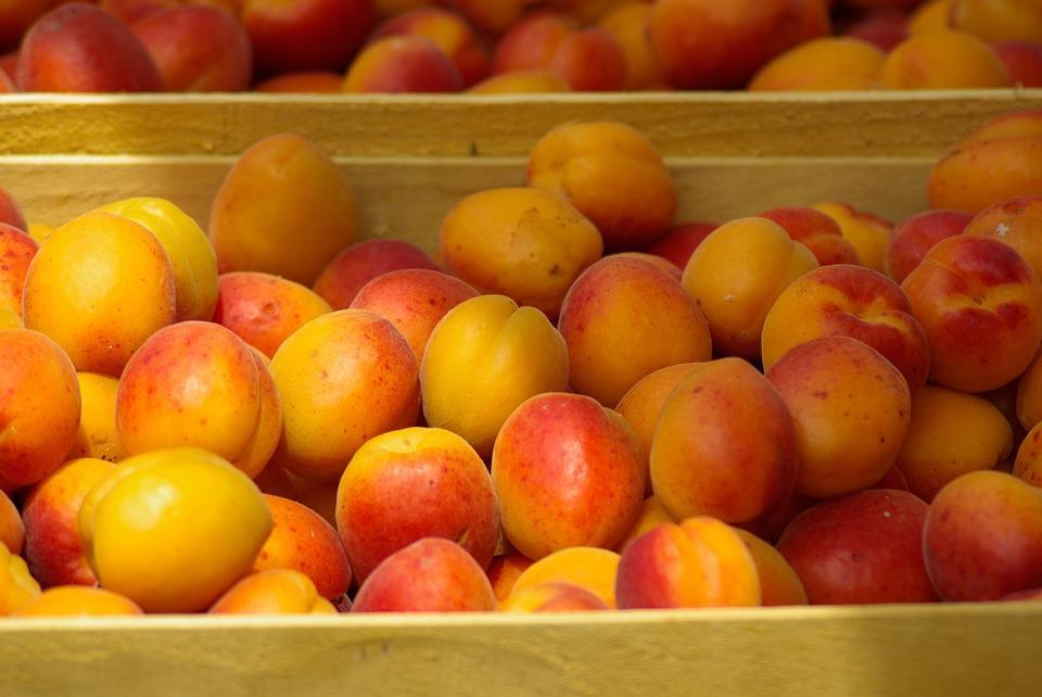 Крупная партия опасных фруктов и овощей не допущена к ввозу в Приморский край