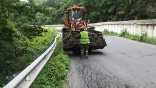 Фото: МБУ «Содержание городских территорий»   Почти 50 кубометров порубочных остатков увезли рабочие с улиц Владивостока за день