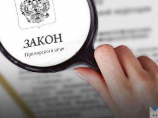 Фото: zspk.gov.ru | В Приморье началась работа по приведению краевых законов в соответствие с принятыми поправками в Конституцию