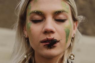 Фото: pexels.com   Севшее на лицо насекомое привело к тяжелым последствиям в Приморье