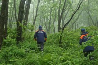 Фото: 25.mchs.gov.ru | Приморцам рассказали, как не заблудиться в лесу