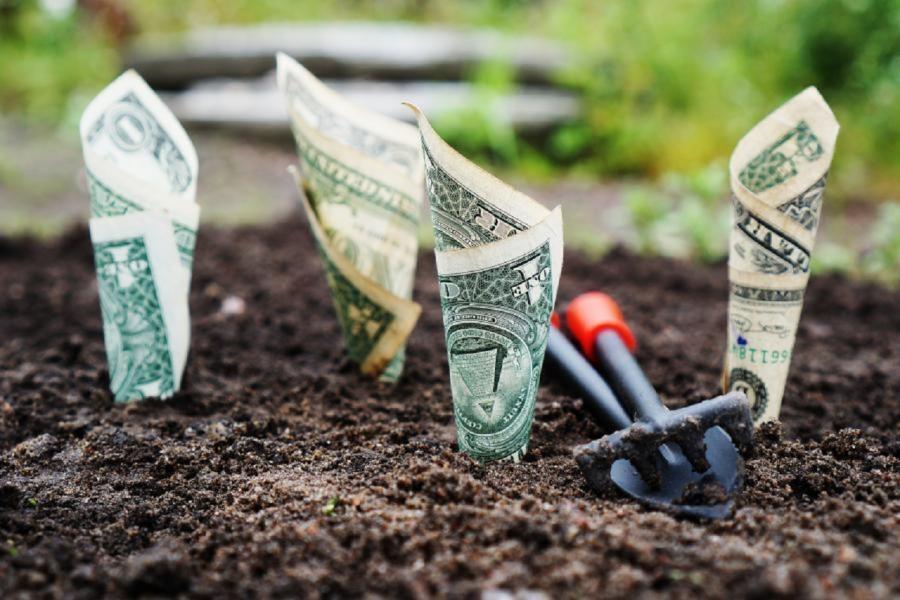 Минфин нацелился на «капитальное» наказание за валютные операции