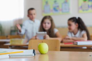Фото: freepik.com | FESCO и благотворительный фонд «Шалаш» запускают в Приморье программу по работе с трудным поведением среди школьников