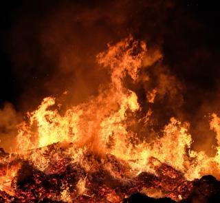Фото: pexels.com | Пламя застало врасплох: крупный пожар случился на базе отдыха в Приморье