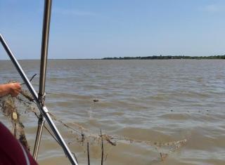 Фото: агентство по рыболовству Приморского края | В Приморье от мусора очистили более 20 километров береговой полосы озера Ханка