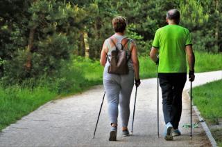 Фото: pixabay.com   Каким пенсионерам начнут доплачивать по 4932 рубля к пенсии с 1 августа