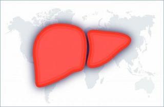Фото: top-sofosbuvir.com   Вирусные гепатиты