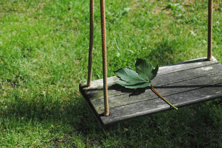 ВПриморье около детского сада обнаружили гектар опасного для здоровья растения