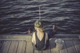 Фото: pixabay.com | Ученые из Приморья выявили побелевшие жабры у рыбы