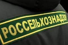 Зараженные продукты обнаружили на иностранном судне в Приморье