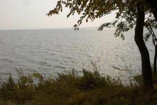 Фото: Wikipedia/kevin.tao | «Первый раз такое вижу»: что произошло с озером Ханка, сняли на видео в Приморье