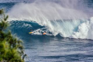 Фото: pixabay.com   «Всеобщая эвакуация»: самый точный синоптик рассказал о цунами в Приморье