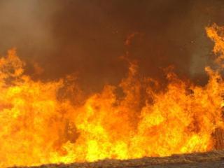 Фото: PRIMPRESS   Приморские синоптики объявили штормовое предупреждение